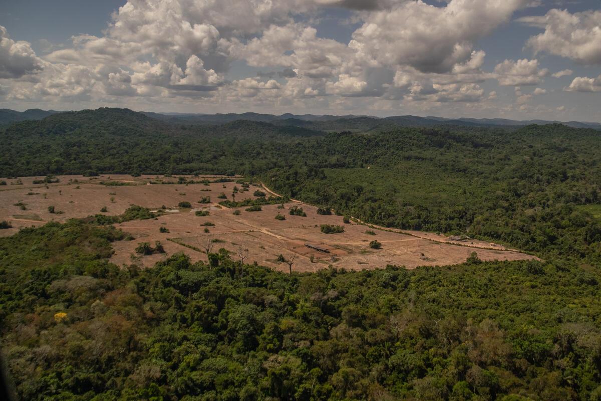 """Monitoramento de Desmatamento e Queimadas na Amazônia em Julho de 2020 - Caso """"Maranhense"""". © Christian Braga / Greenpeace"""