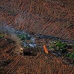 fogo na Amazônia em Mato Grosso