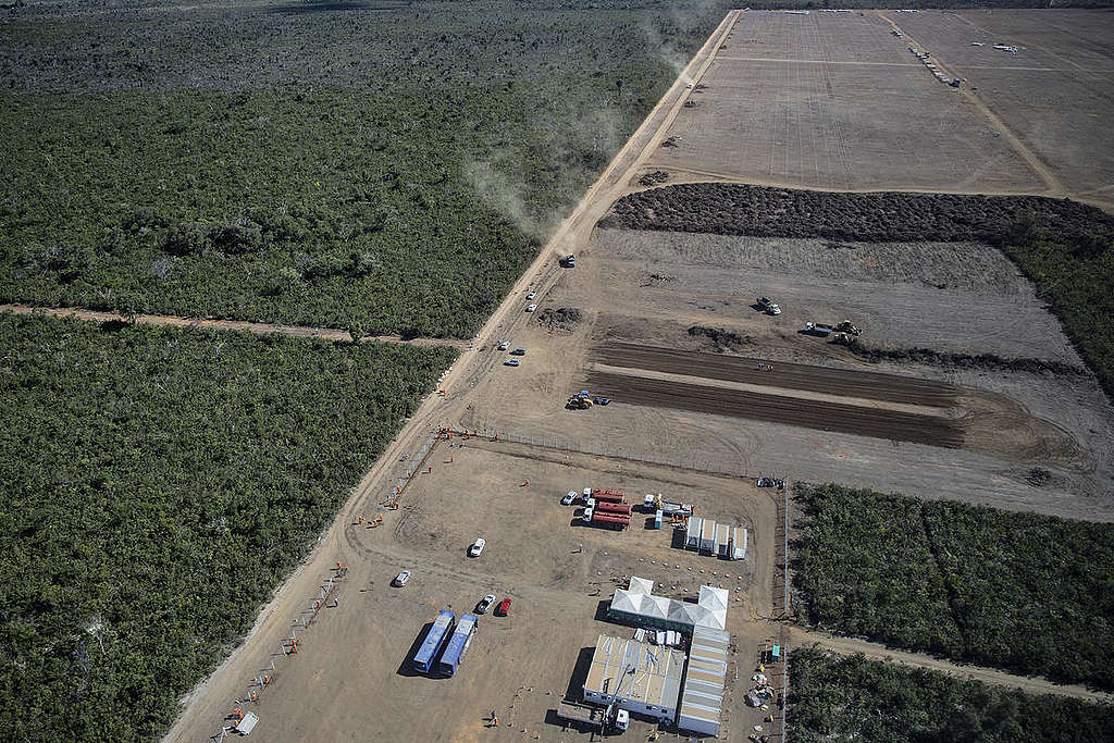 Soya Production in the Cerrado Region, Brazil. © Marizilda Cruppe / Greenpeace