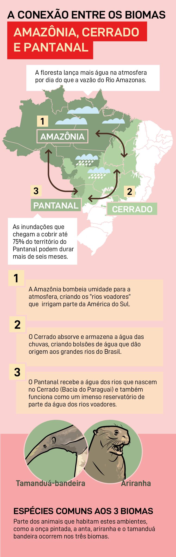 A conexão entre biomas Amazônia, Cerrado e Pantanal