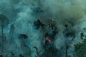 Imagem da floresta amazônica sendo desmatada
