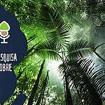 As Árvores Somos Nozes 40 – Especial: Pesquisa Datafolha sobre a Amazônia
