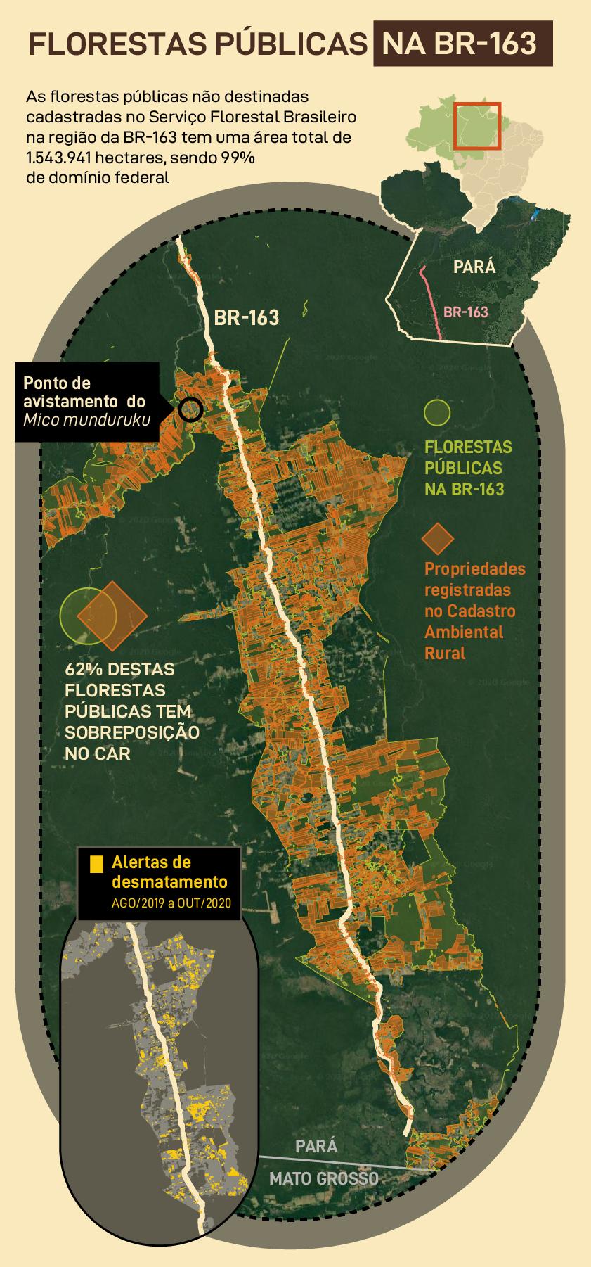 Florestas públicas na BR-163