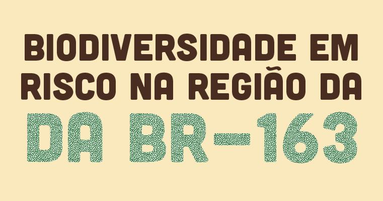 Biodiversidade em risco na região da BR-163