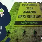 As Árvores Somos Nozes 43 – Biden, não confie em Bolsonaro