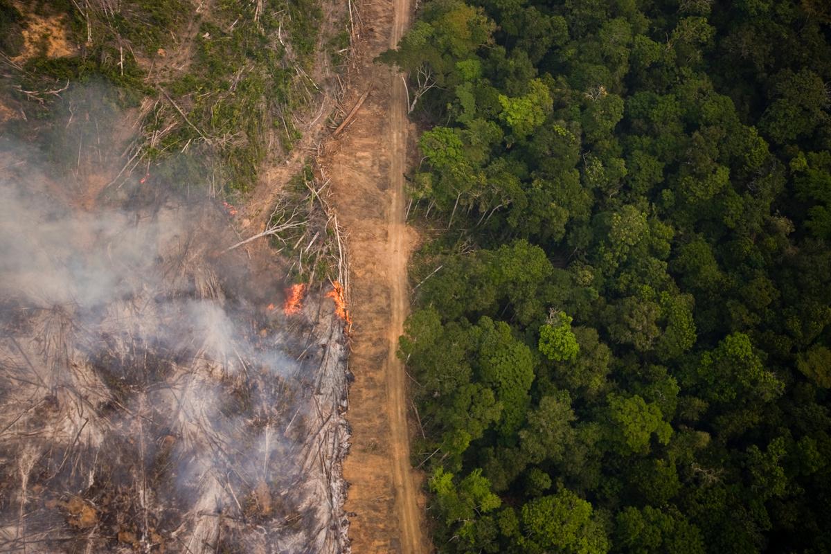 Sobrevoo mostra floresta em chamas na Amazônia