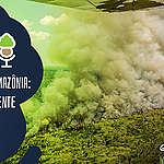 As Árvores Somos Nozes 47 – Maquiagem camuflada: entenda o papel dos militares na proteção da Amazônia