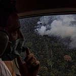 Artistas sobrevoam a Amazônia e testemunham a destruição causada pelo fogo e desmatamento