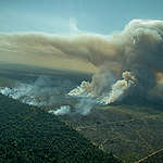 Apesar da redução dos alertas de desmatamento da Amazônia, número ainda é maior que agosto de 2018