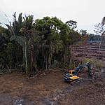 Uma nova e arriscada fronteira do desmatamento na Amazônia
