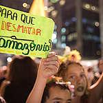 #TodosPelaAmazônia alcança 300 mil assinaturas!