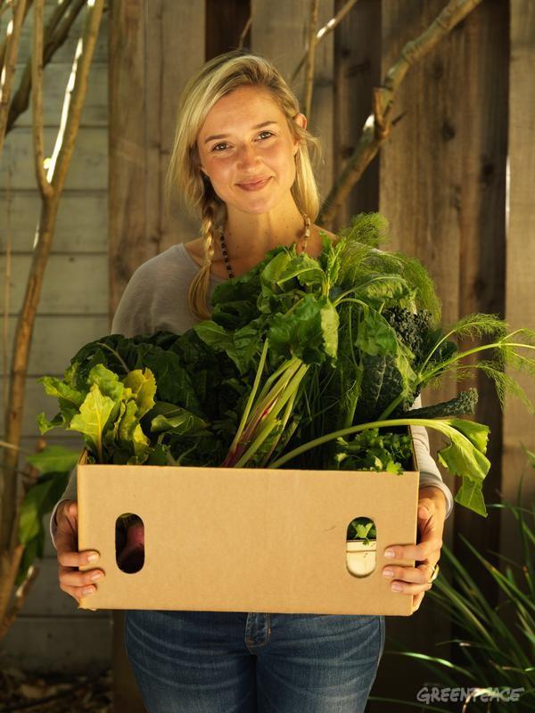 екологична храна