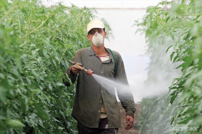 Как индустриалното земеделие вреди на нашата околната среда