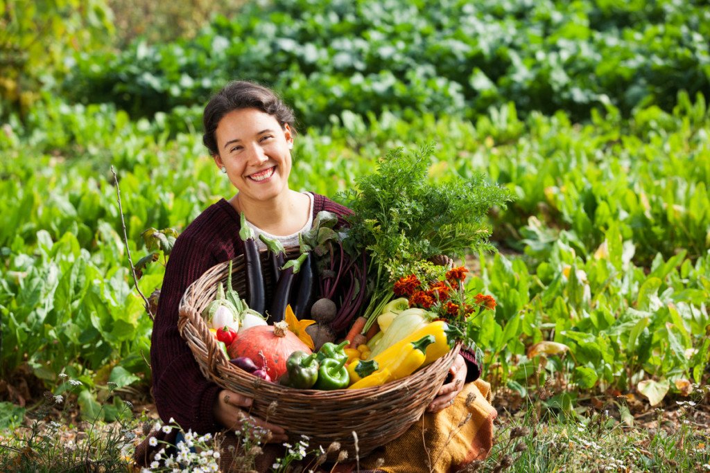 Organic Vegetables in Hungary