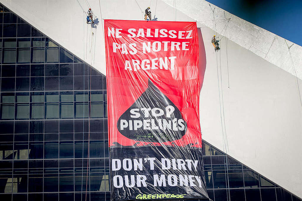 Greenpeace Canada Activists Climb Olympic Park Tower in Montreal