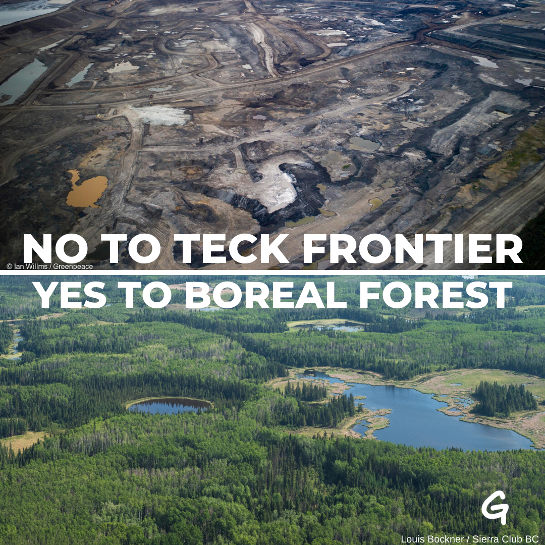 No to Teck Frontier, yes to boreal forest