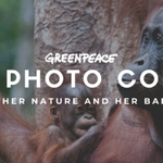 Greenpeace Canada's Annual Photo Competition is open for submissions!