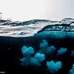 No drilling for oil in marine refuges