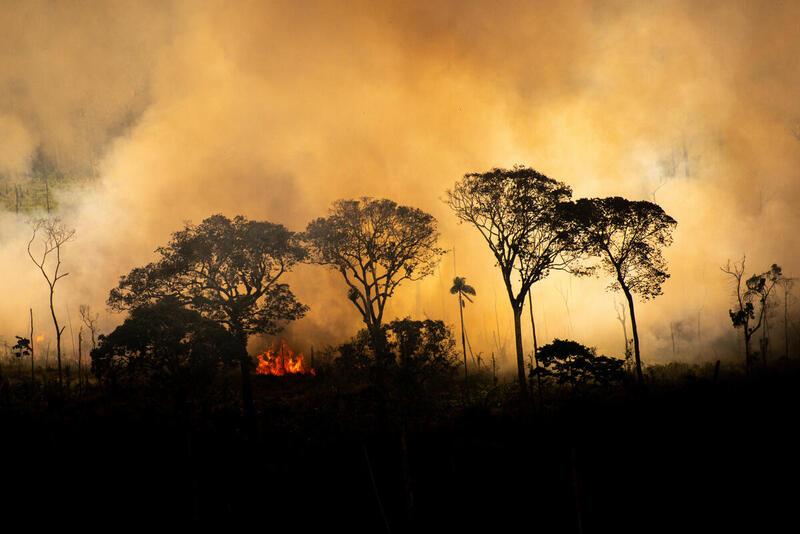 The burning Amazon