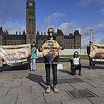 La réponse du gouvernement à notre pétition sur l'Amazonie laisse beaucoup à désirer