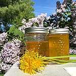 How to make vegan dandelion honey