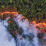 Forests burning in Siberia