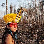 Notre gouvernement doit agir, car ce qui se passe en Amazonie nous concerne tou·te·s