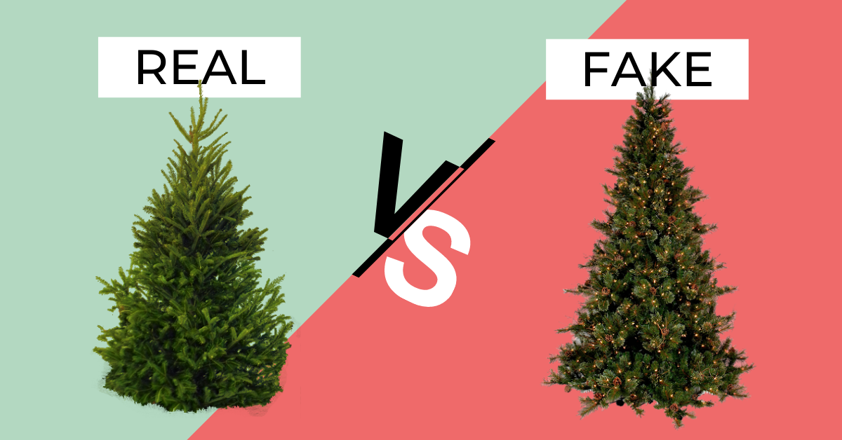 Can't decide on a real vs. fake Christmas tree? Try one of these eco-friendly options