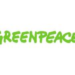 Greenpeace destaca el derecho a la manifestación pacífica de la ciudadanía