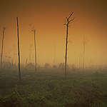 Expertos climáticos señalan un punto decisivo para la humanidad