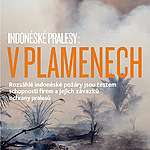 Indoneske pralesy – V plamenech