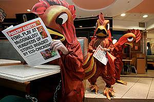 Aktivisté převlečení za obří kuřata vtrhli do pobočky McDonald's v Londýně