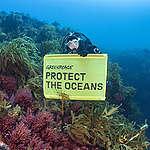 Jednání o ochraně oceánů se odkládá, kampaň Greenpeace pokračuje
