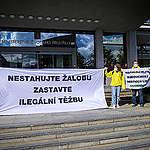 Organizace Greenpeace protestovala proti uzavření tajné a slabé dohody o dolu Turów před ministerstvem životního prostředí