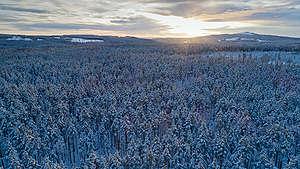 Ore Skogsrike. © Christian Åslund