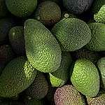 Derfor kan du nyde din avocado med god samvittighed – kød er en langt større skurk overfor miljøet og klimaet