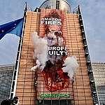 Vi har nu mulighed for at stoppe EU's ødelæggelse af verdens skove