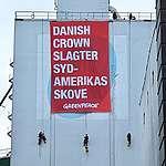 """Greenpeace blokerer sojafoder til danske svin på Aarhus Havn: """"Danish Crown slagter Sydamerikas skove"""""""