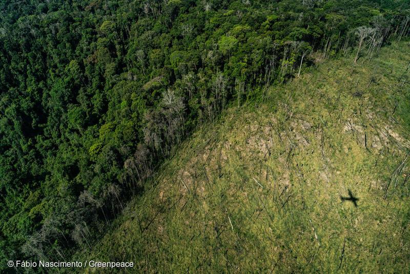Cachoeira - Flight over Amazonia 2019 in the State of ParáCachoeira - Sobrevoo pela Amazonia 2019 no estado do Pará