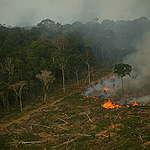 Burning Amazon Rainforest in Brazil. © Greenpeace / Daniel Beltrá