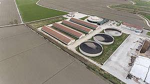 Pig Factory Farm in Schivenoglia, Italy. © Tommaso Galli / Greenpeace