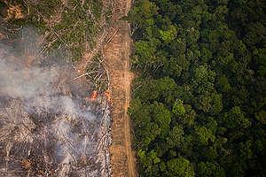Metsäpalokausi Amazonilla