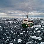 Arktinen merijää on tänä vuonna historiallisen pieni: Greenpeacen laiva ja tutkijat paikan päällä