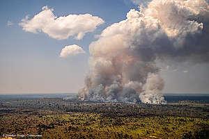 Brasilian metsäpalot syyskuu 2020.