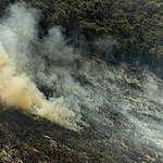 Amazonin metsäpaloissa jälleen uusi ennätys – myös Suomella on vastuu palojen hillitsemisessä
