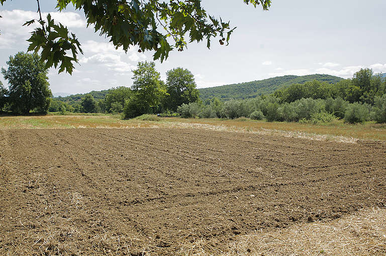 Field in Paleovracha, Greece