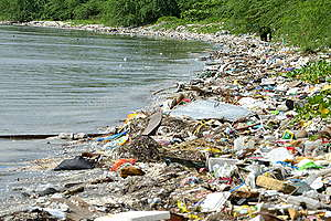 Plastic on Beach. © The 5 Gyres Institute