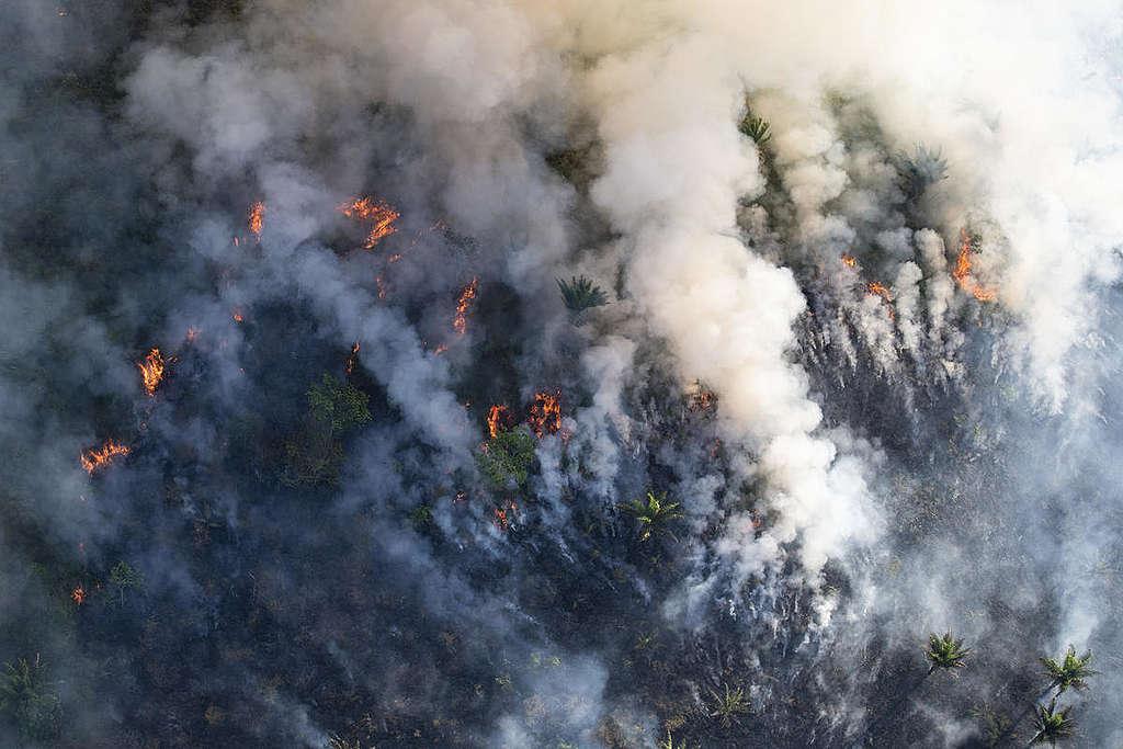 Forest Fires in Brazilian Amazon. © Daniel Beltrá / Greenpeace