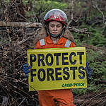 Save the Forest Stop Fires Photo Op in West Kalimantan. © Rendra Hernawan / Greenpeace
