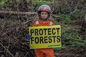 Save the Forest Stop Fires Photo Op in West Kalimantan. © Rendra Hernawan / Greenpeace